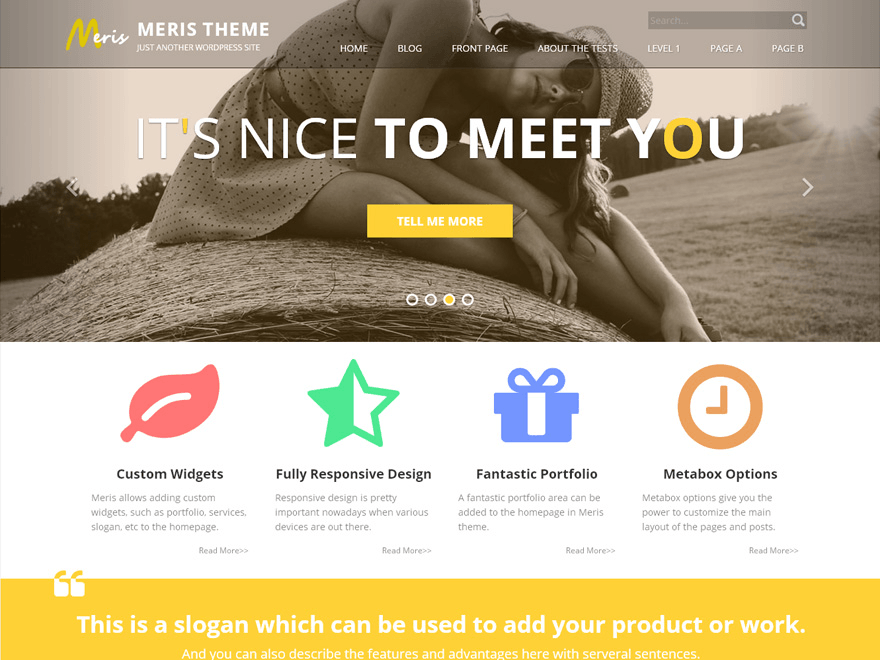 Meris - perfect theme for all organizations