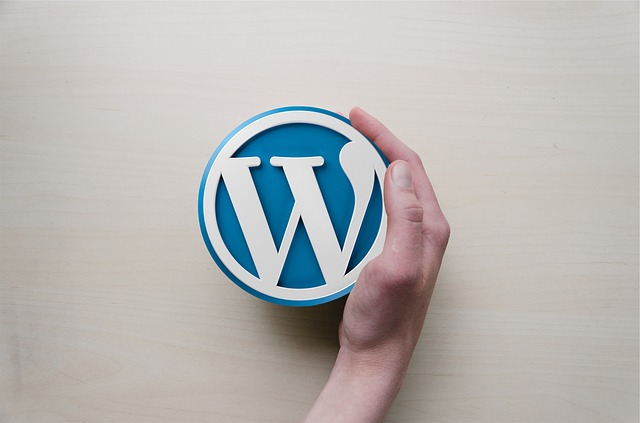 10 Powerful Reasons Why You Should Choose WordPress?